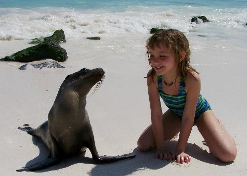 galapagos_islands_sea_lion.jpg