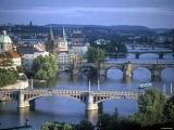 Совместить приятное с полезным очень просто в Чехии